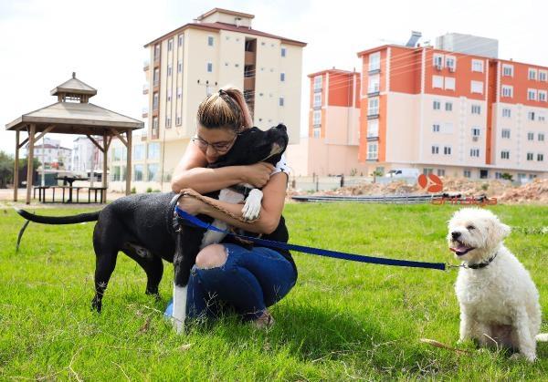 2019/10/ruhsati-olmayan-pitbull-beslemesin-52bbc6716d96-2.jpg