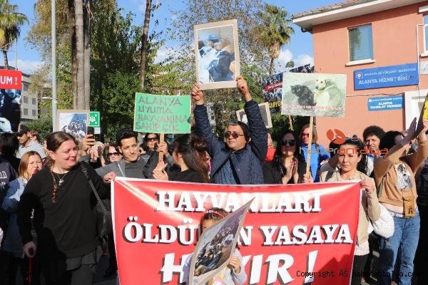 2019/12/alanyada-hayvanseverden-protesto-7ba9eb7deaa5-1.jpg