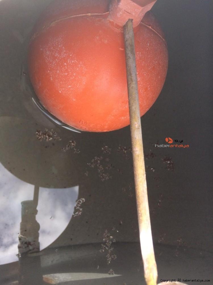 2020/05/temizlemek-icin-soktugu-musluk-filtresinde-yuzlerce-sinek-gorunce-saskina-dondu-20200522AW02-8.jpg