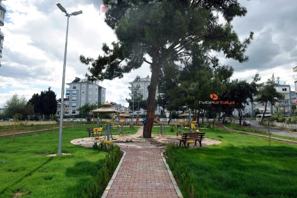 2020/05/varsaka-cam-agacli-park-20200531AW02-1.jpg