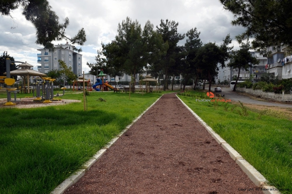 2020/05/varsaka-cam-agacli-park-20200531AW02-2.jpg