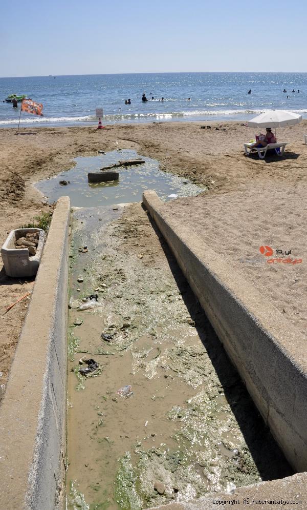 2020/07/dunyaca-unlu-plajda-plajda-kirlilik-ve-koku-rahatsizligi--201488642ef2-2.jpg