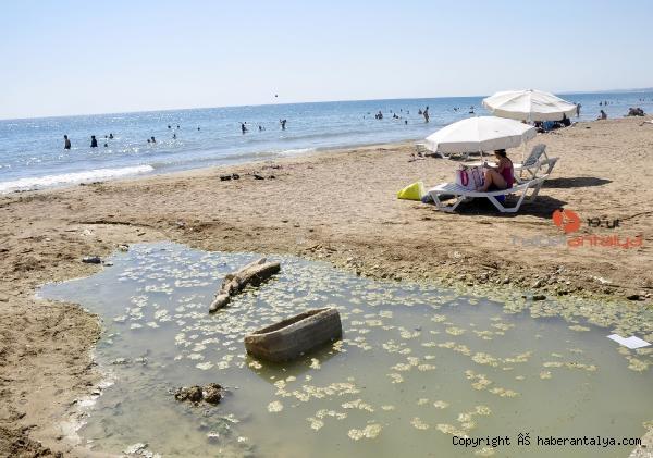 2020/07/dunyaca-unlu-plajda-plajda-kirlilik-ve-koku-rahatsizligi--201488642ef2-4.jpg