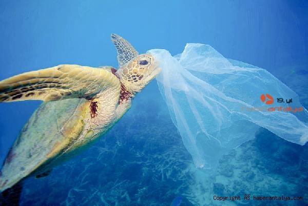 2020/07/tek-kullanimlik-plastikler-yasaklansin-kampanyasina-dev-destek-97cd0f4d9733-5.jpg