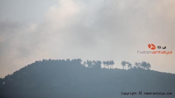 2020/09/adrasandaki-yanginda-60-hektar-ormanlik-alan-kule-dondu-15085b5034f3-5.jpg