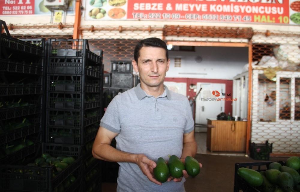2020/09/alanyadan-bulgaristana-3-ton-avokado-ihracati-20200917AW11-6.jpg