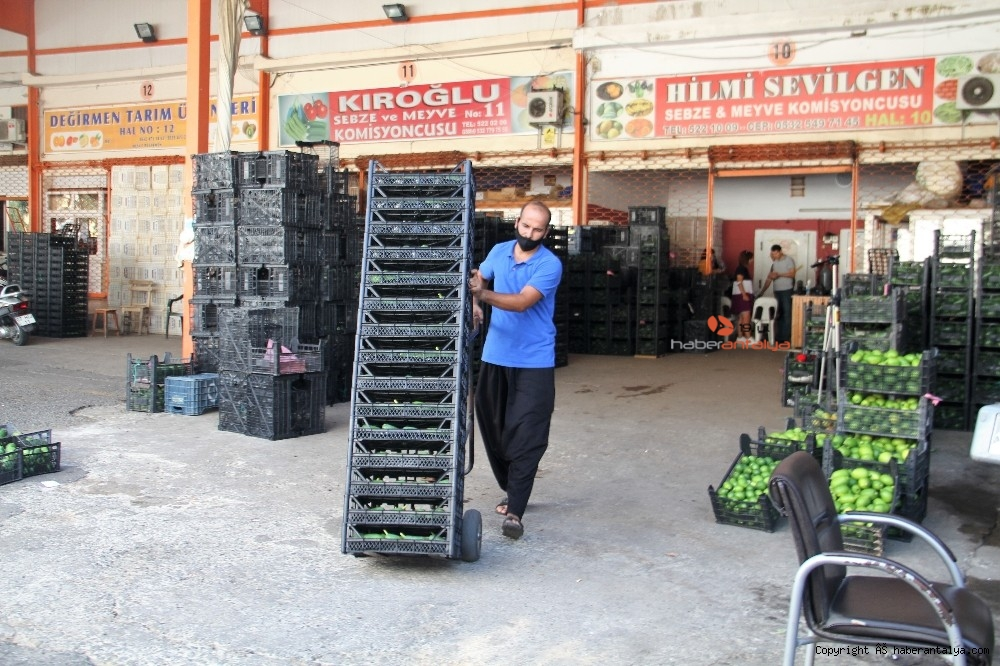 2020/09/alanyadan-bulgaristana-3-ton-avokado-ihracati-20200917AW11-9.jpg