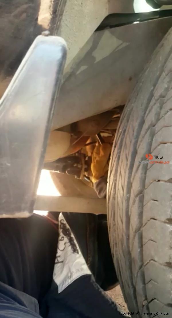 2020/09/sumer-ezgunun-aracinin-motoruna-giren-kediyi-itfaiye-cikardi-8a05a9c43353-2.jpg