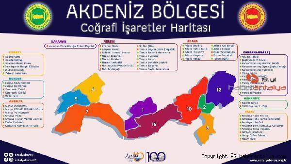 2020/10/akdenizin-cografi-isaret-haritasi-cikti-f07063d47286-2.jpg