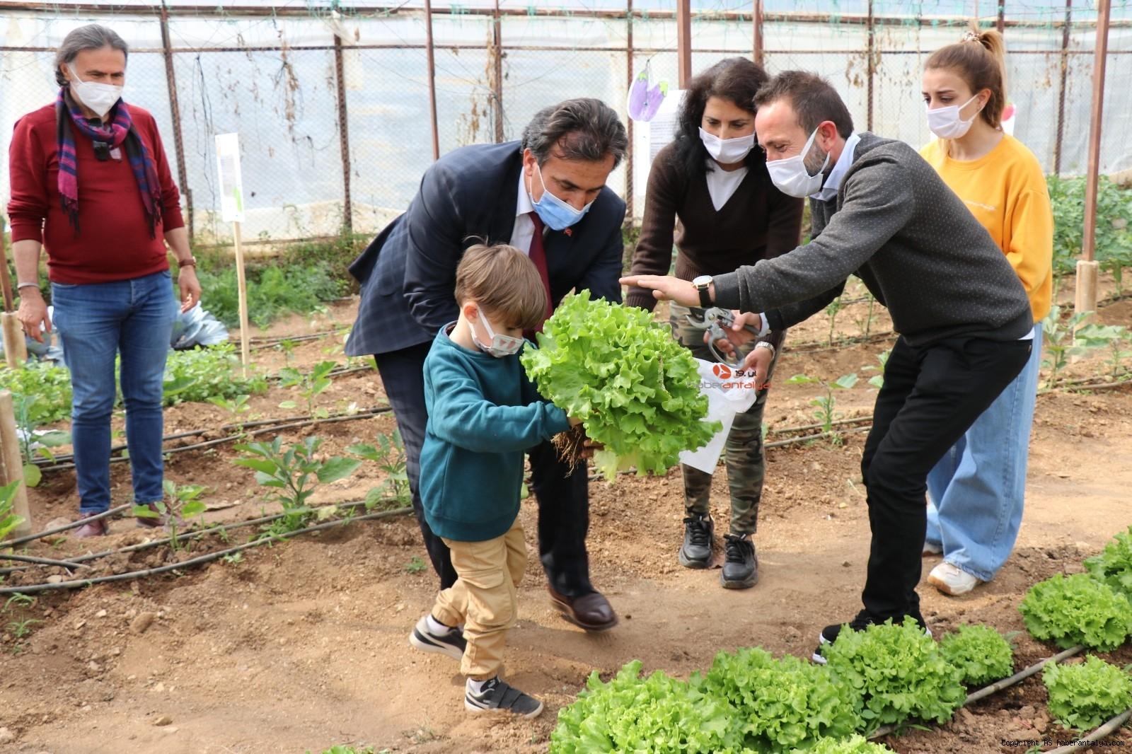 2021/04/minikler-serada-organik-sebze-yetistiriyor-20210415AW29-5.jpg