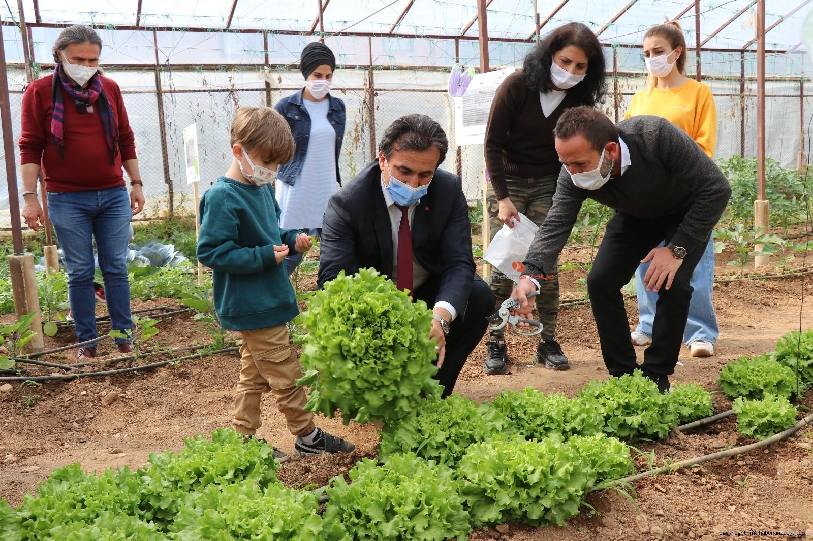 2021/04/minikler-serada-organik-sebze-yetistiriyor-20210415AW29-6.jpg