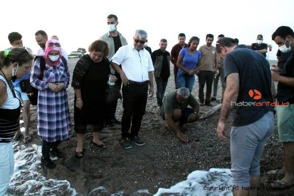 2021/07/manavgat-sahilindeki-ilk-caretta-caretta-yavrulari-denize-ulasti-cd164044ea68-2.jpg