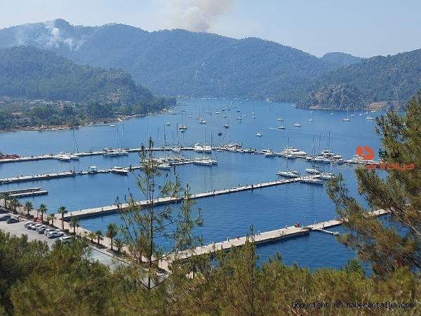 2021/08/alevlerin-ilerledigi-marinadaki-yatlar-ve-tekneler-aciga-demirledi--1af29e2930dc-4.jpg