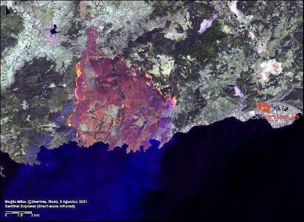 2021/08/yanginlarinin-uydu-goruntusu-icler-acisi--9b027a12026b-5.jpg