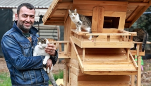 Sokak Hayvanlarını Koruma ve Yaşatma Derneği Başkanı'na 1 yıl 8 ay hapis