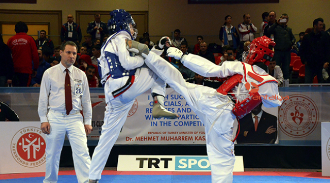 Türk taekwondoculardan Avrupa Başkanlık Kupası'nda 10 madalya