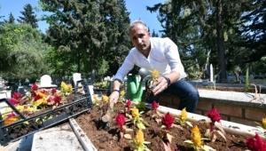 Mezar Bakımı İçin Şirket Kurdu