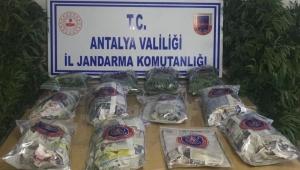 Jandarmadan uyuşturucu operasyonu!