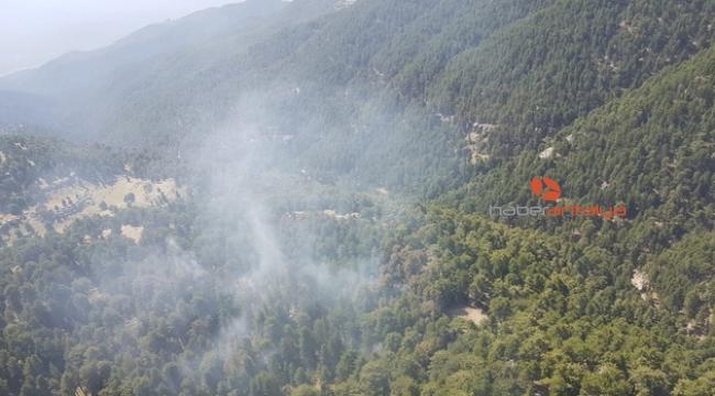 Orman yangını!