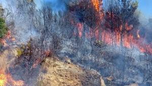 Manavgat bayrama iki büyük yangınla girdi