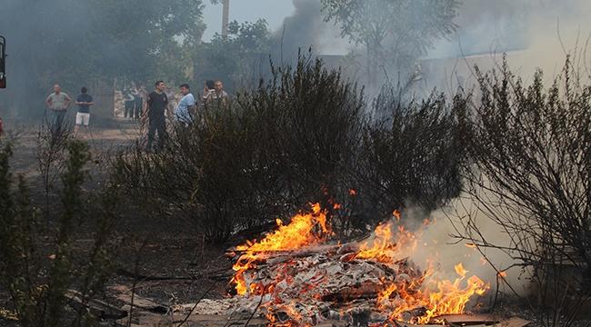 Ormanlık alanda çıkan yangın korkuttu