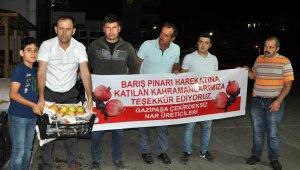 Gazipaşa'dan Mehmetçiğe 1 ton çekirdeksiz nar