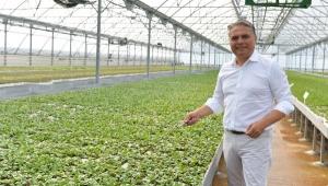 Muratpaşa bahçe bitkileri üretip satacak
