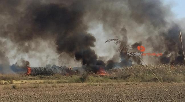 Antalya'da sazlık alanda çıkan yangın kontrol altına alındı