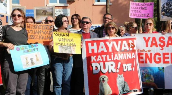 Alanya'da hayvanseverden protesto