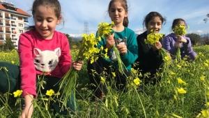 Gazipaşa'da mevsim bahar