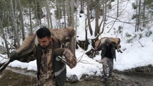 Yaban keçisi avcılarına rekor ceza!