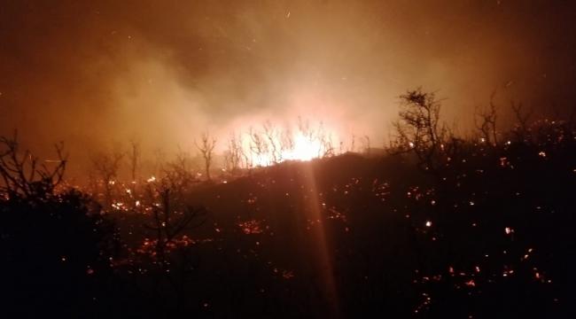 Kaş'ta zeytinlik ve makilik alan yangını