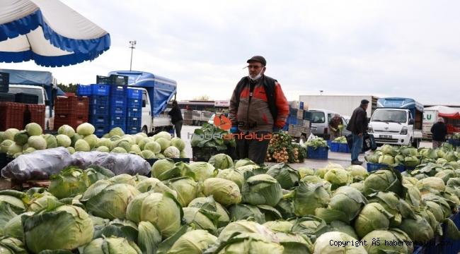 Ürün bolluğu yaşanan Antalya halinden Türkiye'ye sebze meyve sevkıyatı tam gaz devam ediyor