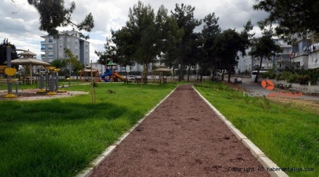 Varsak'a çam ağaçlı park