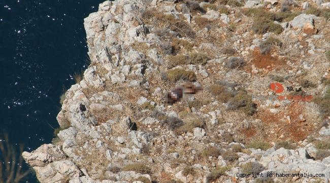 25 yaşındaki gencin kayalıklarda şüpheli ölümü !