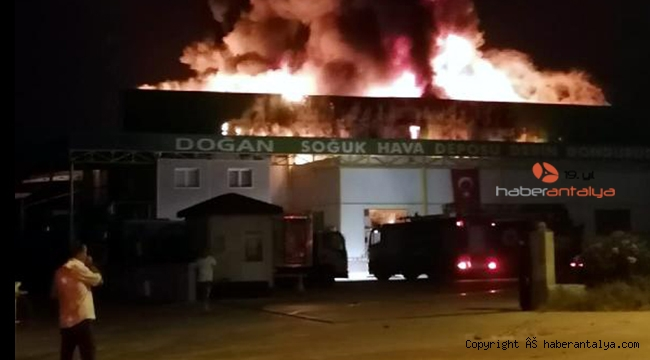 Serik'te soğuk hava deposunda yangın