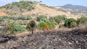 Gazipaşa'da tarım arazisinde yangın