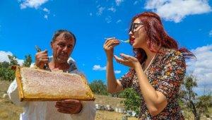 Şifa kaynağı Lavanta balının kilosu bakın ne kadar ?