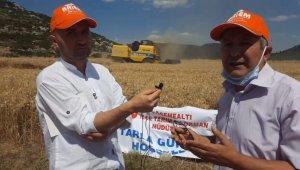 Yerli ve milli buğday çeşidi online tarla günü ile tanıtıldı