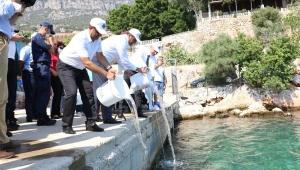 15 bin yavru balık denize salındı