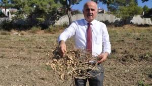 ANTBİRLİK'ten çiftçiye destek olacak karar !