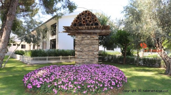 DokumaPark'a 5 bin yıllık arı sereni kazandırıldı