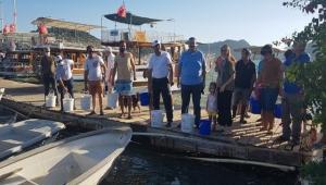 Kekova'da denize 15 bin yavru balık bırakıldı