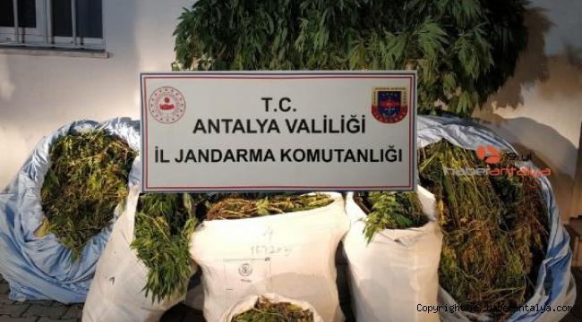 Antalya'da 161 kilo esrar ele geçirildi !