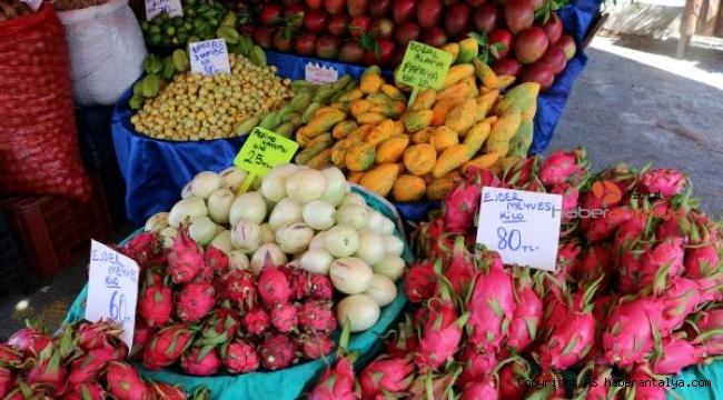 Faydaları saymakla bitmeyen longon ve mangostanın fiyatı şaşırtıyor