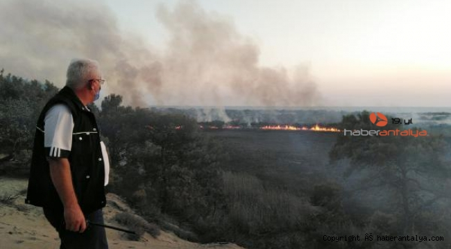 Kaş'ta sazlık alan ve orman alanı yandı
