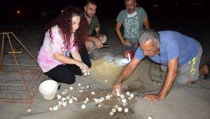 Kumluca'da caretta caretta yavruları denizle buluştu