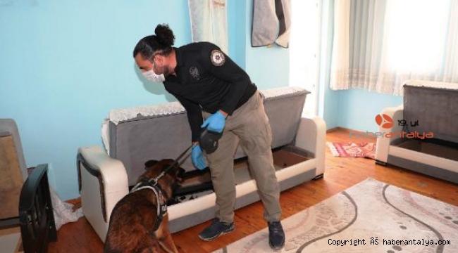 Antalya'da 100 polisle uyuşturucu operasyonu