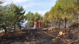 Gazipaşa Polis Hatıra Ormanı'nda yangın