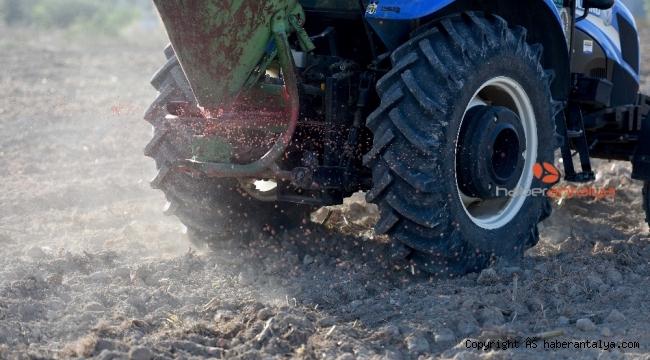 Muratpaşa'da buğday ekimi tamamlandı